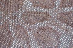 Textur av närbilden för äktt läder som utföra i relief under huden en reptil, bakgrund Royaltyfria Foton