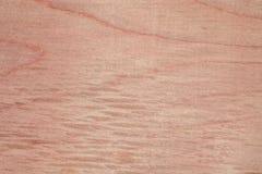 Textur av naturlig björkkryssfaner, yttersidan av trät har gnidits med sandpapper och har skrapats Royaltyfri Fotografi