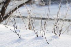 Textur av naturligt snö och ris Royaltyfri Foto
