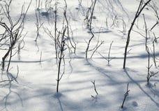 Textur av naturligt snö och ris Royaltyfria Foton