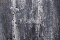 Textur av naturligt trä, färg Royaltyfri Bild