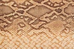 Textur av närbilden för äktt läder som utföra i relief under huden en reptil, ljus brunt, bakgrund Royaltyfri Foto
