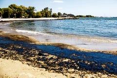 Textur av råoljaspillet på sandstranden från oljeutsläppolycka, Agios Kosmas fjärd, Aten, Grekland, September 14 2017 Arkivbilder