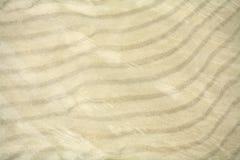 Textur av sanden Arkivbild