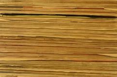 Textur av sidor Royaltyfri Bild