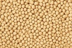 Textur av sojabönabönor, tofutexturbakgrund stock illustrationer