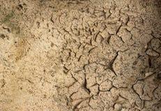 Textur av sprucken jord, closeup, spricka i jordningen, bakgrund, miljö arkivfoto