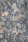 textur av stenar på stranden Arkivfoton