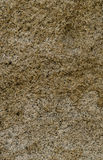 Textur av stenen Arkivbild