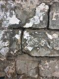 Textur av stora gamla gråa tegelstenar arkivbilder