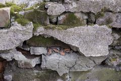 Textur av tegelstenväggen som täckas med betong och mossa arkivbild