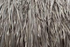 Textur av Thatched från den Imperata cylindricaen Thailand royaltyfria foton