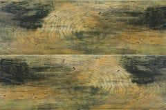 Textur av trä Arkivbild