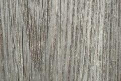 Textur av trä, gammalt bräde Royaltyfri Bild
