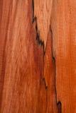 Textur av träplankacloseupen Royaltyfri Foto