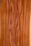 Textur av träplankacloseupen Royaltyfri Fotografi