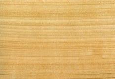 Textur av träplattan Arkivfoto