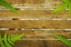 Textur av trätabellen med det gröna bladet på hörnen Arkivfoto