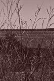 Textur av Volgaet River Arkivbilder