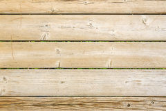 Textur av wood bakgrund royaltyfri fotografi