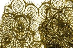 Textur bakgrund, modell tyg snör åt Guld- brunt Tagandecl Royaltyfri Foto