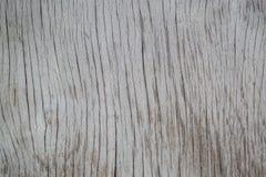 Textur di legno grigio fotografia stock