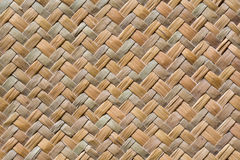 Textur from dried plants. Pattern of the surface is made from dried plants to build Royalty Free Stock Photo