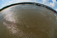 textur för 5 sand Royaltyfria Bilder