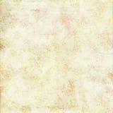Textur för bakgrund för sjaskig chic green för tappning rose Royaltyfri Bild