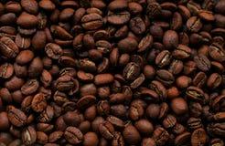 textur för bakgrundsbönakaffe royaltyfria bilder