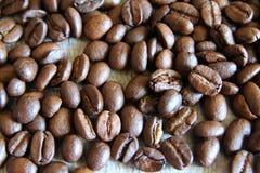 textur för bakgrundsbönakaffe Royaltyfri Foto