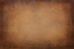 textur för bakgrundsfräkneläder Royaltyfri Bild