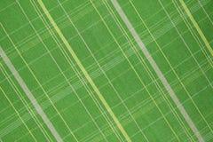 textur för bomullstyg Arkivbild