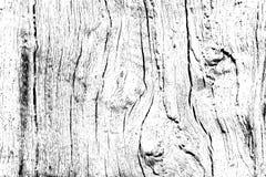 Textur för ekträ som fylls med sprickor och fnuren, planlägger träbakgrund för samkopiering arkivbilder