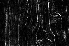 Textur för ekträ som fylls med sprickor och fnuren, planlägger träbakgrund för samkopiering royaltyfria foton