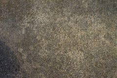textur för fyrkant för platta för staket för bakgrundscementbetongelement Arkivfoton