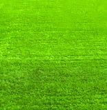 Textur för grönt gräs för bakgrund, abstrakt foto för natur Arkivfoto