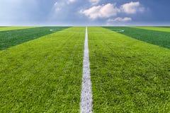 Textur för grönt gräs i fotbollfält med himmel. Royaltyfri Fotografi
