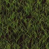 Textur för grönt gräs med mörk backround Royaltyfria Bilder
