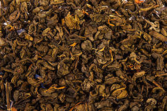 Textur för grönt te Arkivbild