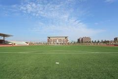textur för green för gräs för bakgrundsfältfotboll Arkivbild