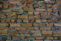 Textur för Grungetegelstenvägg för din bakgrund Royaltyfri Foto