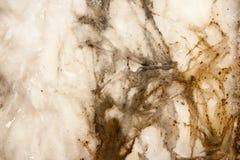 Textur för Grungevit- och bruntbakgrund Arkivbilder