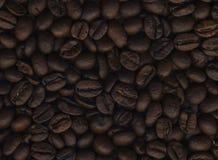 textur för härlig kokkonst för kaffe för bakgrundsbönor släkt Fotografering för Bildbyråer