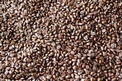 textur för härlig kokkonst för kaffe för bakgrundsbönor släkt Royaltyfria Foton