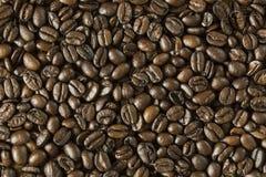 textur för härlig kokkonst för kaffe för bakgrundsbönor släkt Royaltyfri Bild