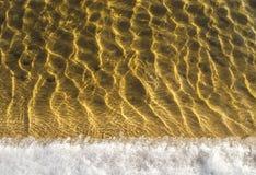 Textur för havsbotten, gula sandvågor i grunt vatten. Royaltyfri Bild