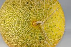 textur för hud för dagghonungmelon Arkivfoton
