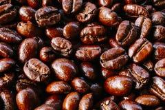 Textur för kaffeböna Arkivbild