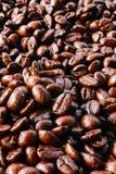 Textur för kaffeböna Arkivfoto